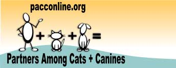 Partners Among Cats and Canines